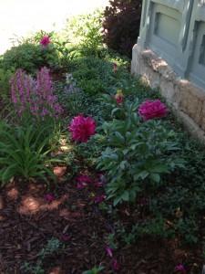 Gardens are lovely